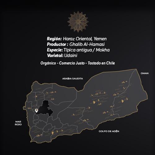 Hamasi Café De Especialidad De Yemen Mokha Bunn
