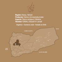 Mokha-AA-Café-De-Especialidad-De-Yemen-Mokha-Bunn