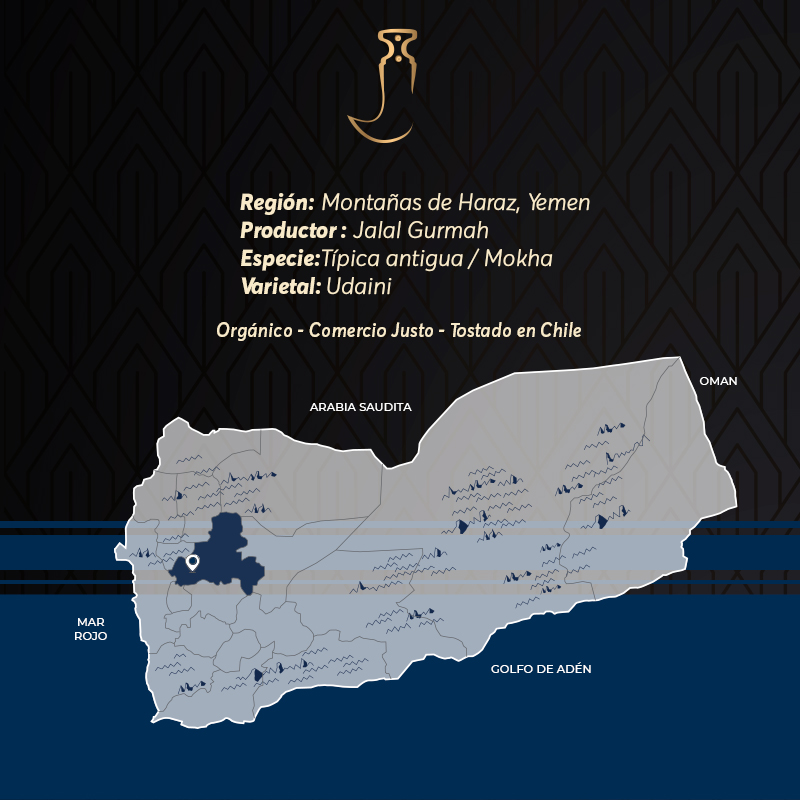 Gurmah Limited Edition Café De Especialidad De Yemen Mokha Bunn Chile