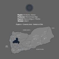 Haimi-Café-De-Especialidad-De-Yemen-Mokha-Bunn-Chile