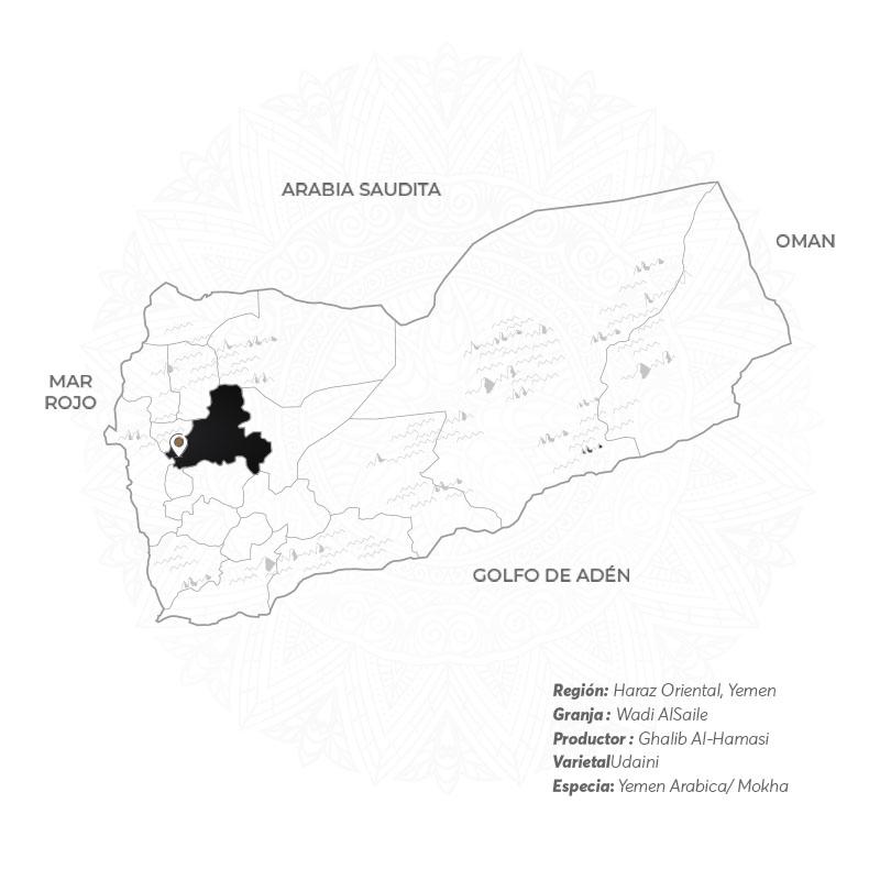 Hamasi VARIEDAD Mokha Bunn