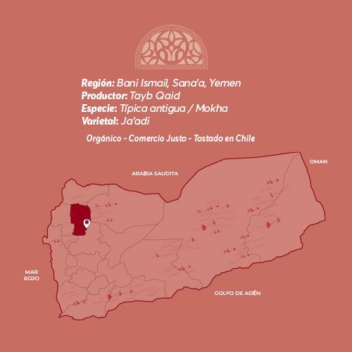 Ismaeli Café De Especialidad De Yemen Mokha Bunn Chile