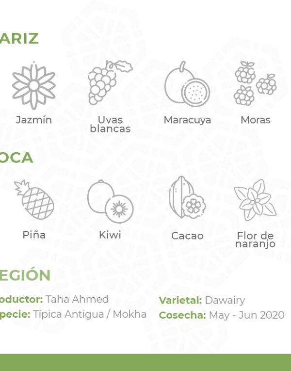 Café-De-Especialidad-De-Yemen-Por-Al-Mayor-Aanisi-Mokha-Bunn-Chile