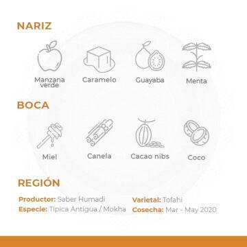 Café-De-Especialidad-De-Yemen-Por-Al-Mayor-Bani-Hamad-Mokha-Bunn-Chile