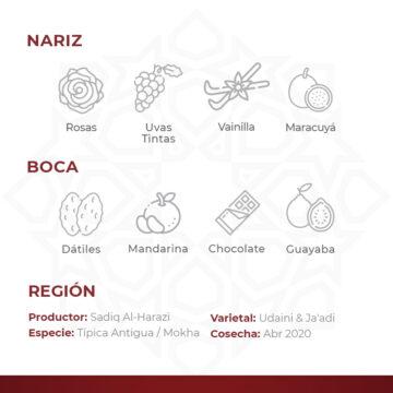 Café De Especialidad De Yemen Por Al Mayor Harazi Premium Mokha Bunn Chile