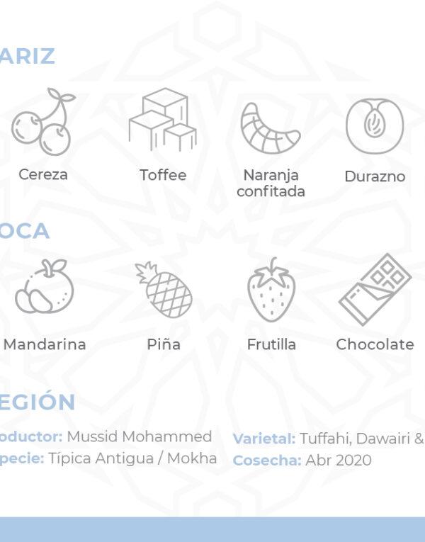 Café-De-Especialidad-De-Yemen-Por-Al-Mayor-Harazi-Sharqi-Mokha-Bunn-Chile