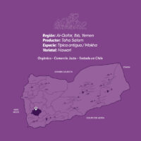 Hawari-cafe-de-especialidad-de-Yemen-Mokha-Bunn-Chile3