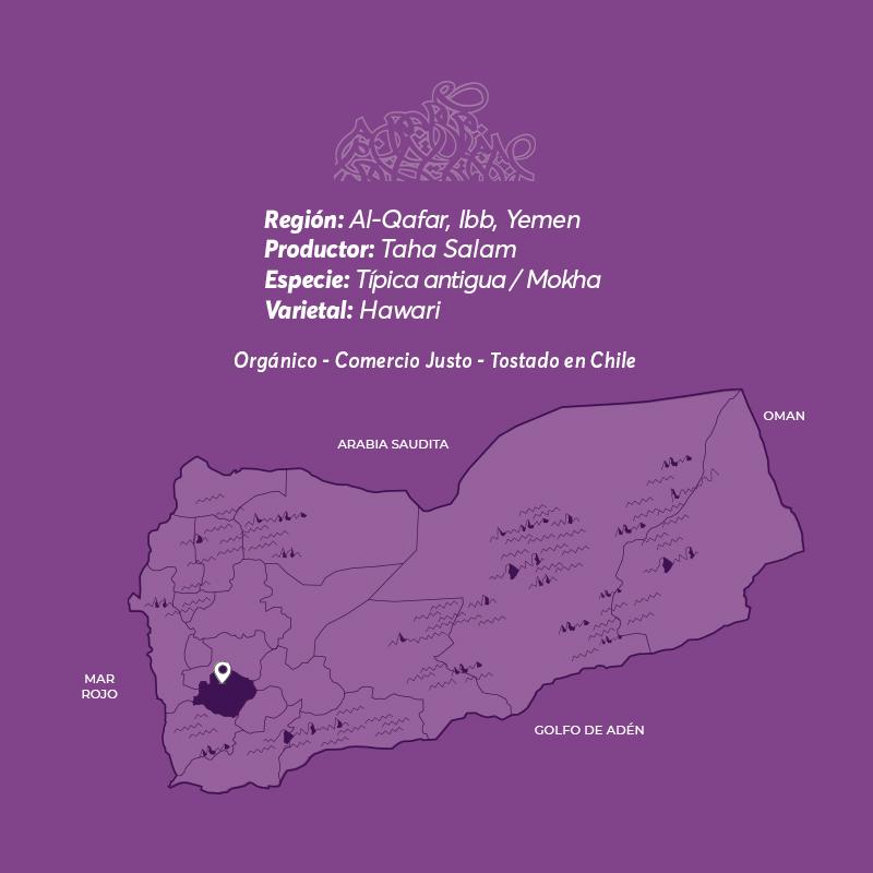 Hawari cafe de especialidad de Yemen Mokha Bunn Chile