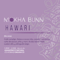 Hawari-cafe-de-especialidad-de-Yemen-Mokha-Bunn-Chile2